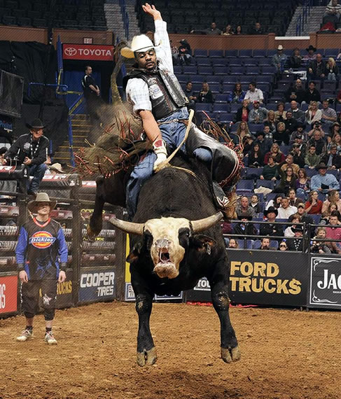 Marcus Randall Rodeo 002